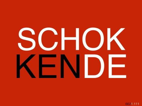 SCHOKKENDE662.001.jpg.001