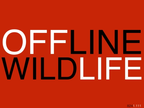 OFFLINEWILDLIFE_824.001